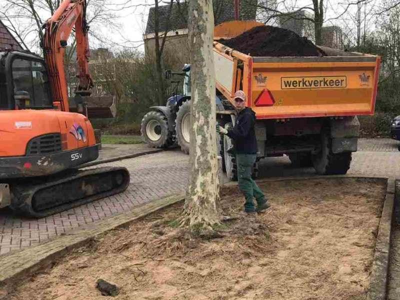 grondverbetering boomspiegel aanbrengen