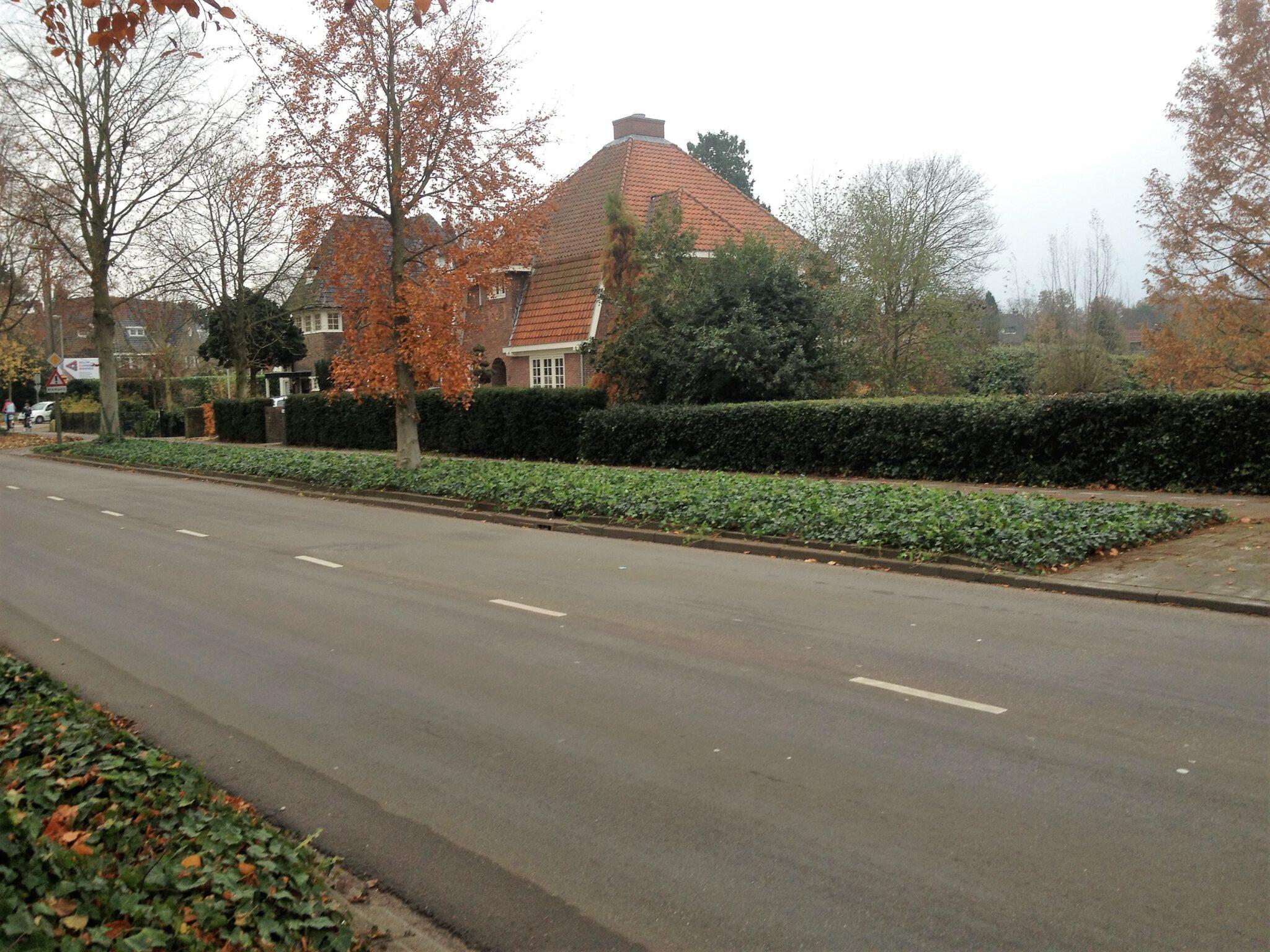 Covergreen Hedera Gemeente Bussum
