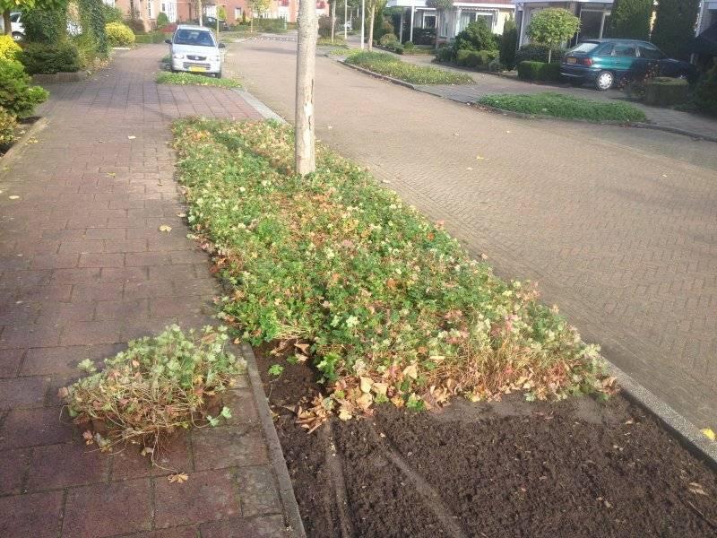 Berkel Milieu Lochem Plantmatten