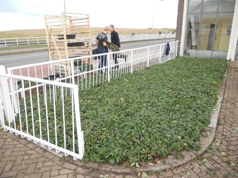 Gemaal Katwijk aan zee covergreen