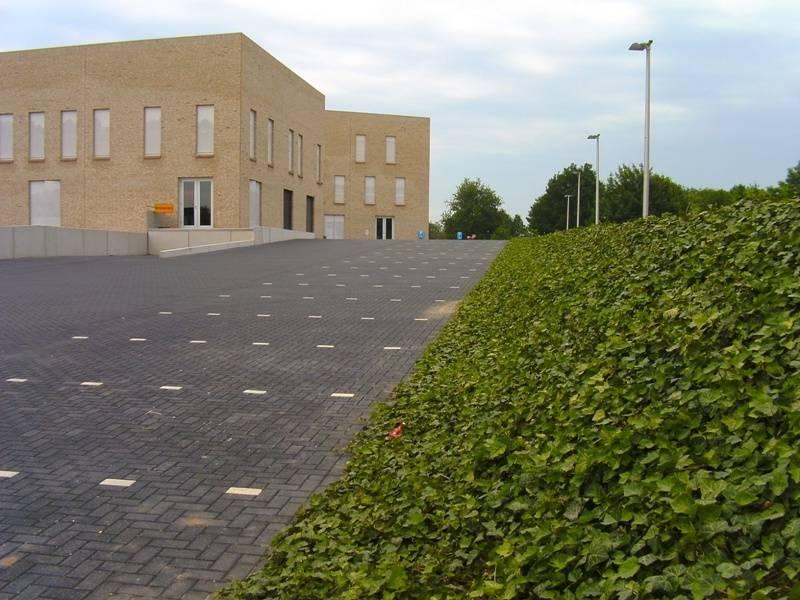 Innovatief groen rond om gemeentehuis Bronckhorst