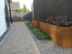 Onderhoudsvriendelijke groene tuin covergreen