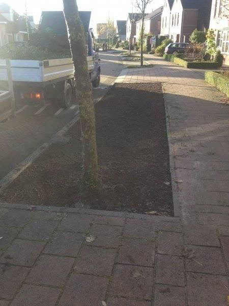 Gemeente Lochem plantenmatten covergreen