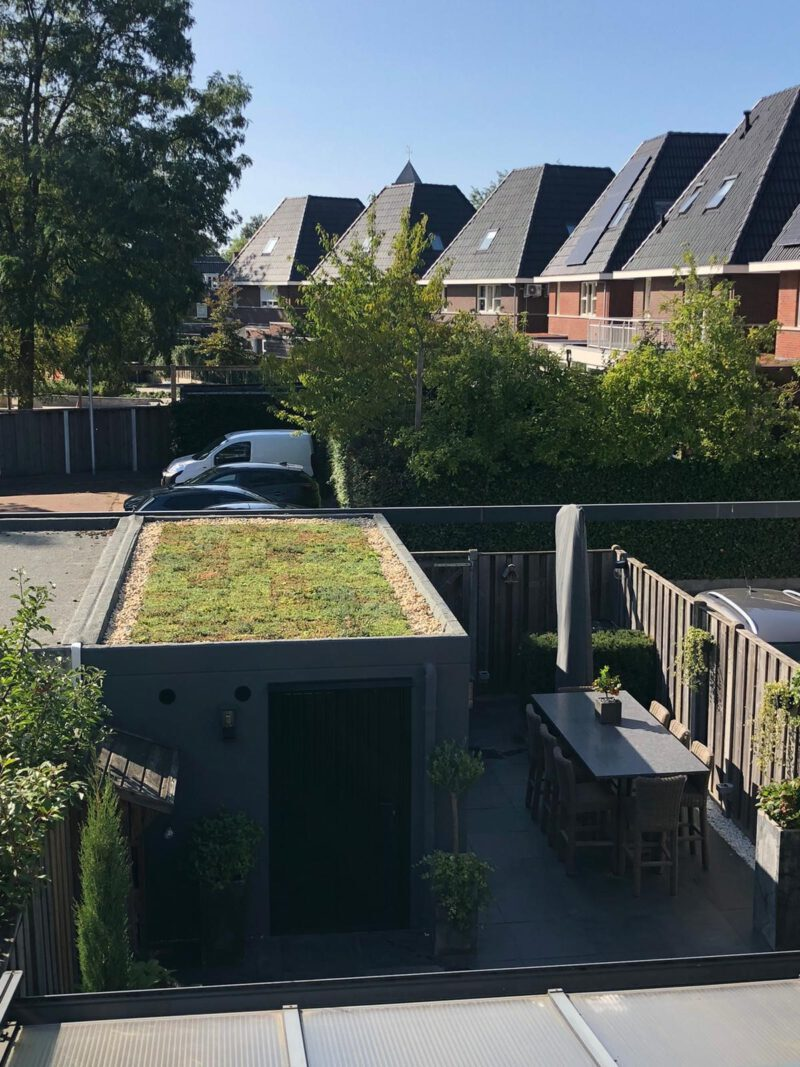 Covergreen sedum roof ready-to-use cassettes