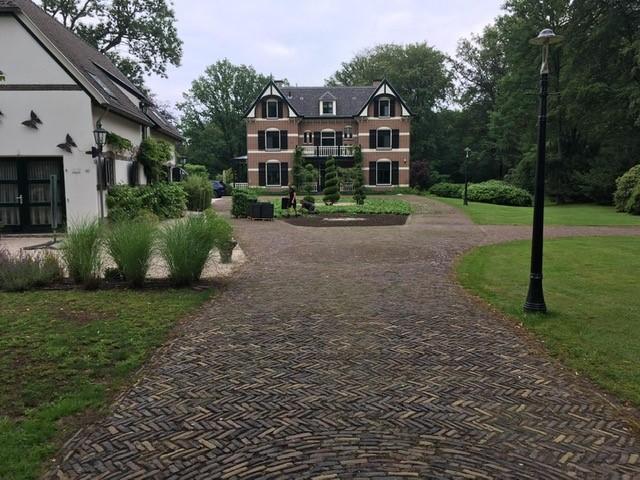 Binnenplaats door Johan Wolters bedekt met Covergreen bodembedekkers